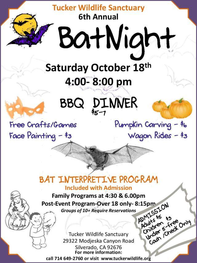 batnightflyer-page-001