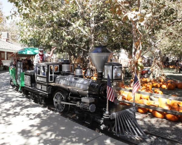 Irvine_Railroad_pumpkin Patch