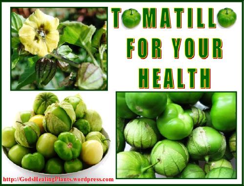 Tomatillo GHP
