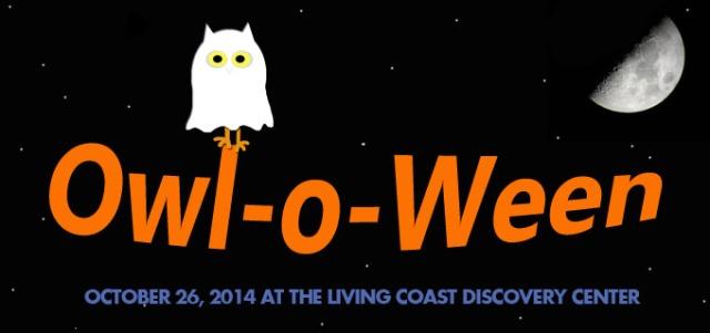 owloween1